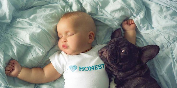 Birbirlerini kardeş zanneden bebek Dilan ve yavru bulldog -  #fotoğraf #hayvan #çocuk   https://gaiadergi.com/birbirlerini-kardes-zanneden-bebek-dilan-ve-yavru-bulldog/