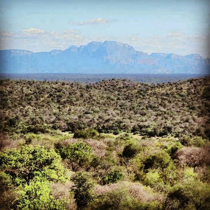 Lowveld, South Africa