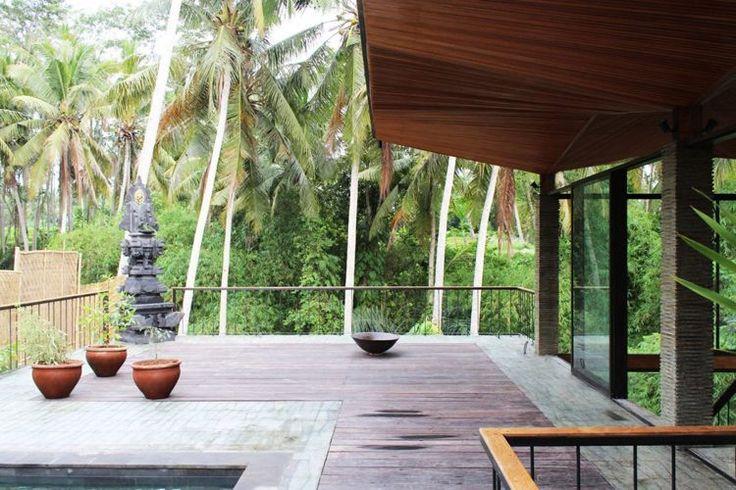 terrasse bois exotique, jardin tropical, plantes vertes en pots en