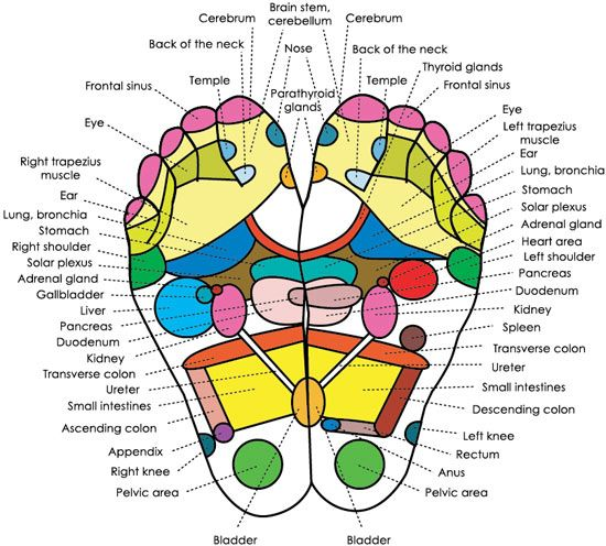 Our bodies are equipped to trigger our own self healing, reflexology is a great example of how this works, the treatment allows the therapist to stimulate all the parts of the body through the feet. It also stimulates balance and efficient flow of energy in the body.