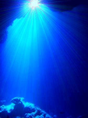 ダイビングするならダイビングショップ&ダイビングライセンスのココナッツ東京本店にお任せ!!初心者ダイバーでも、いっぱい楽しィ~♪♪ダイビングツアー常時開催中!:★☆★蒼の洞窟★☆★