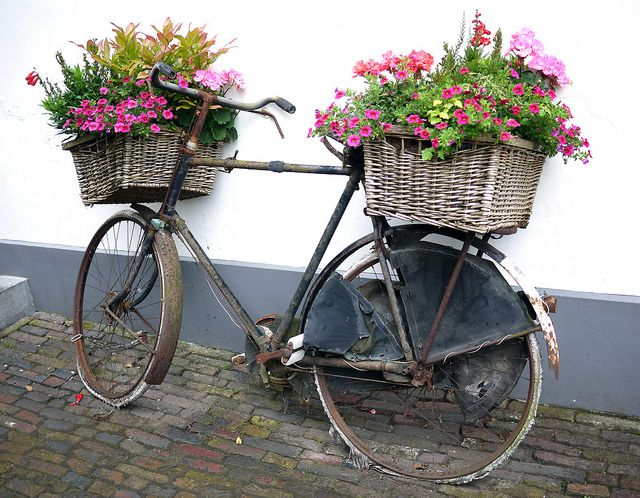 """two baskets along with the bikes, which used to be used to deliver flowers and sometimes act as an """"flower truck""""going through the neighborhood selling the flowers! It would be cool decor placed around!"""