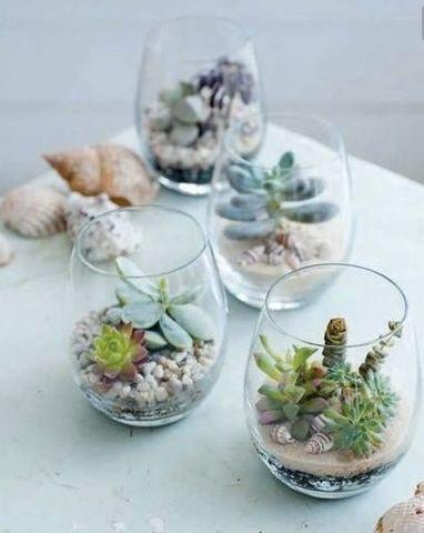 succulents make the cutest engagement party favors