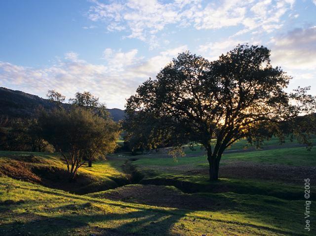 17 best scenic ojai images on pinterest