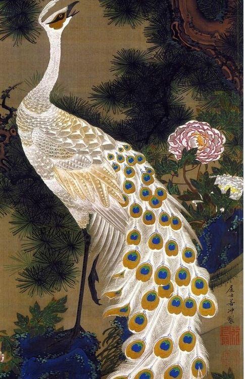 peacock lover poetic wanderlust tracy porter. xx...via.....la-pitonisa-tropical: by Itō Jakuchū