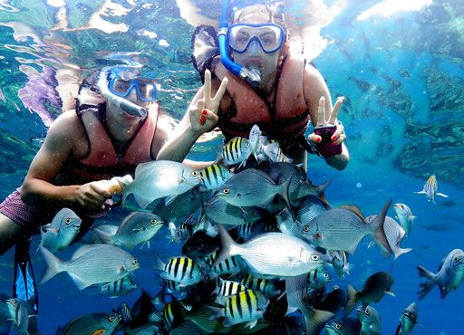 Snorkeling Coral Beach and Satun Cave - Diving Varadero Cuba Varadiving