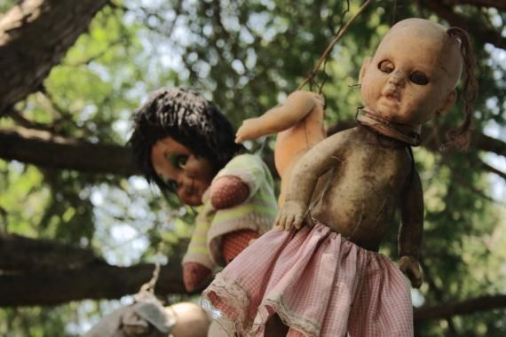 Isla de Munecas, Xochimilco, Mexico. An island filled with hundreds of hanging, decomposing, decapitated dolls.