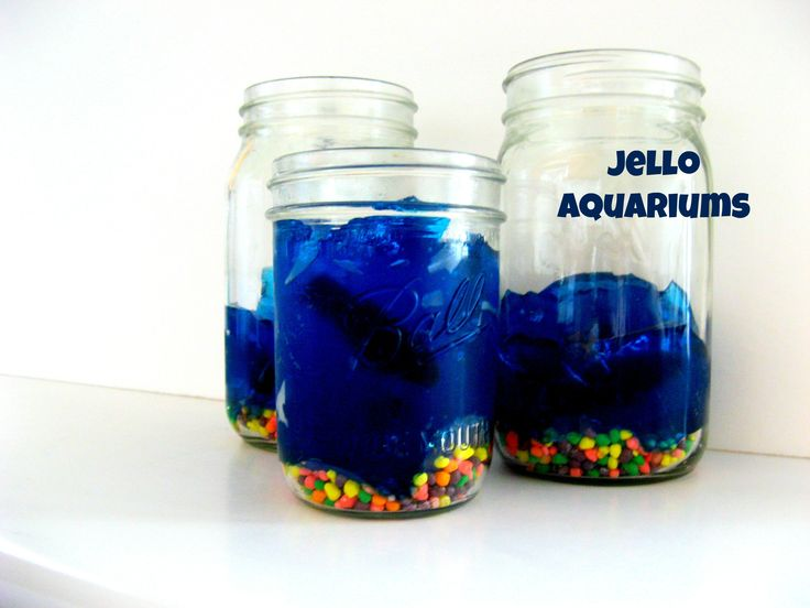 The 25 best ideas about jello aquarium on pinterest for Swedish fish shot
