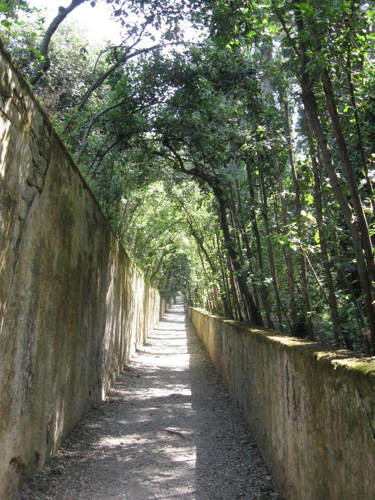Giardino di Boboli la Cerchiata