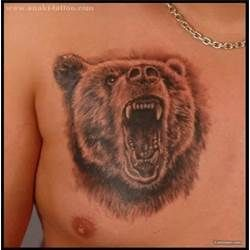Grizzly Bear Tattoos picture 13271