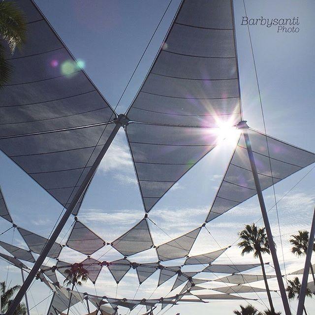 Con la ayuda del sol se pueden crear hermosas fotos... ☀️ Fotografía by: Barbysanti. Place: Disney World, Orlando.