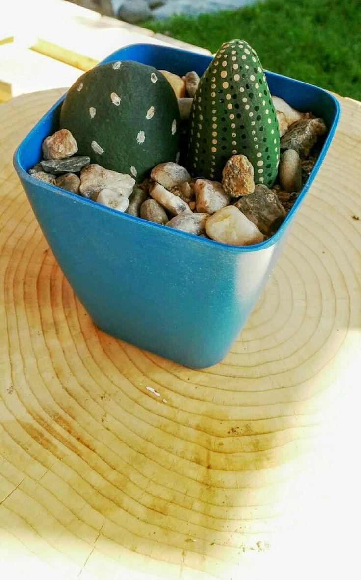 Cactus Éternelle fait de galet peint à la main !
