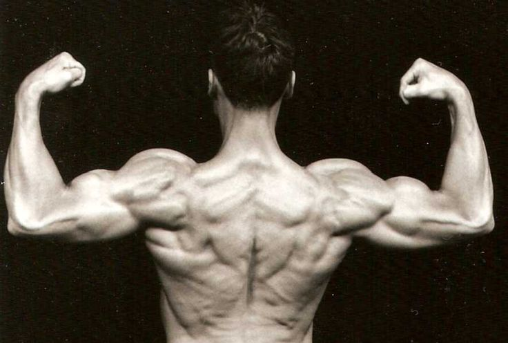 Building Big Arms http://www.musclebuilderrx.com/blog