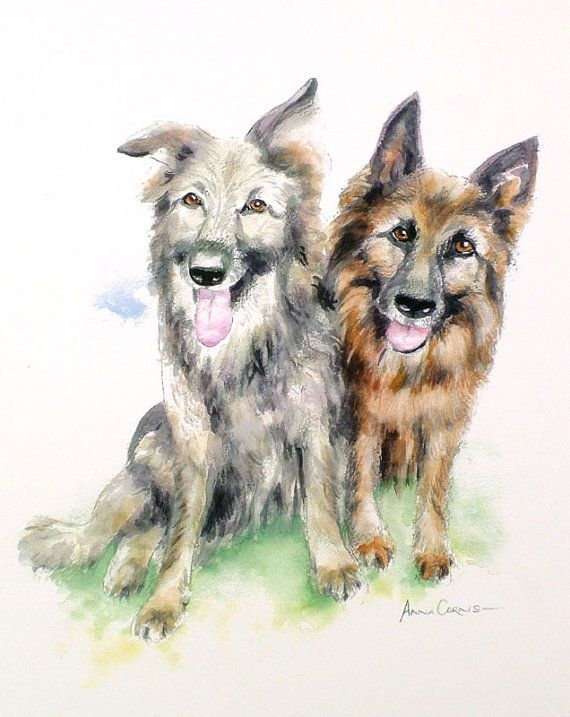 Alsatians Print of Oil on Canvas - A4 - Gelda and Wally, Alsation #Dogs, 5% of profits to Cornwall Air Ambulance Trust #art