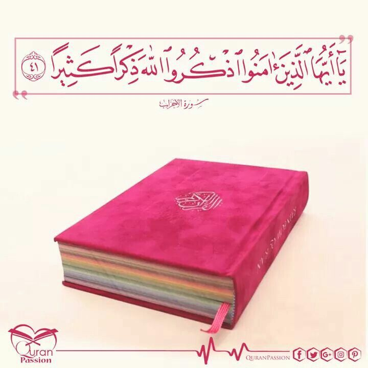 مع شروق شمس يوم جديد اللهم لا ت حملنا ما لا طاقة لنا به وارزقنا الصبر على ما كان وعلى ما سيكون Passion Quran My Heart
