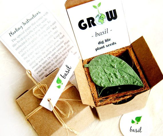 Hey, I found this really awesome Etsy listing at https://www.etsy.com/ca/listing/119707827/indoor-herb-seed-garden-mothers-day