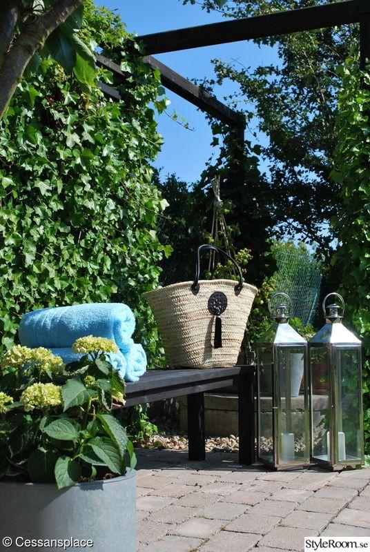 trädgård,ljuslyktor,murgröna,hortensia,trädgårdsbänk