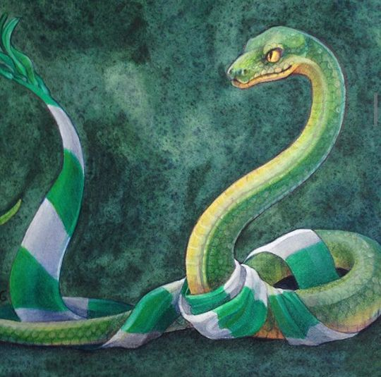 Y la serpiente de Slytherin