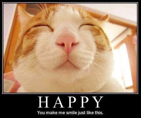 Image result for happy smile meme