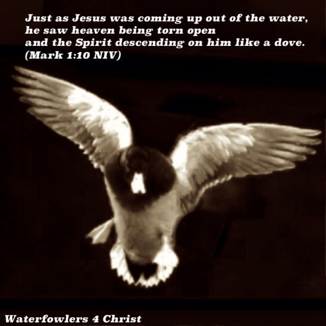 Relatively 160 best Waterfowlers for Christ images on Pinterest | Christ  SB76