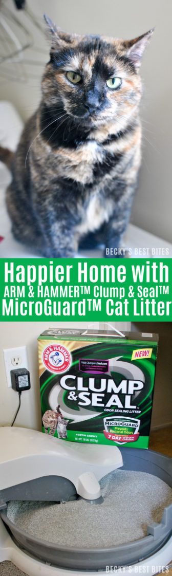 #ad Happier Home with ARM & HAMMER™ Clump & Seal™ MicroGuard™ Cat Litter & $100 Visa Gift card #giveaway http://www.beckysbestbites.com/happier-home-arm-hammer-clump-seal-microguard-cat-litter/?utm_campaign=coschedule&utm_source=pinterest&utm_medium=Becky%27s%20Best%20Bites%20-%20Healthy%20Recipes&utm_content=Happier%20Home%20with%20ARM%20and%20HAMMER%E2%84%A2%20Clump%20and%20Seal%E2%84%A2%20MicroGuard%E2%84%A2%20Cat%20Litter #clumpandseal