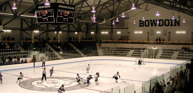 Image result for ice hockey rink graphics