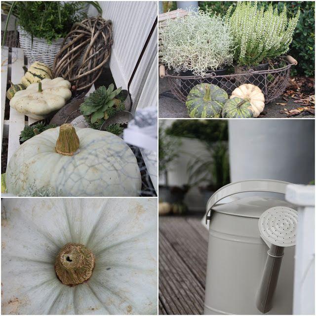 1000 bilder zu herbst auf pinterest k rbisse november baby und franz sisches landhaus. Black Bedroom Furniture Sets. Home Design Ideas