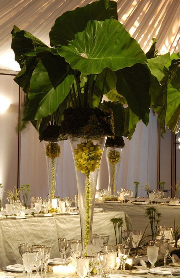 White and green Father's Day brunch centerpiece by Preston Bailey. Look at those palm leaves!