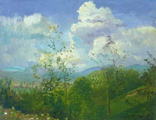 Mednyánszky, László (1852-1919) Flowery hill-side