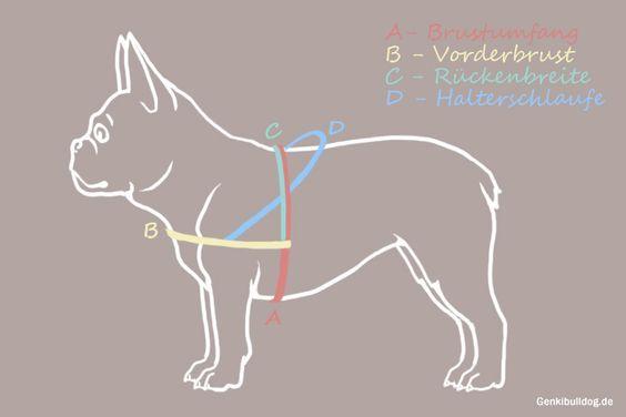 Messanleitung für Norwegergeschirr Hundegeschirr