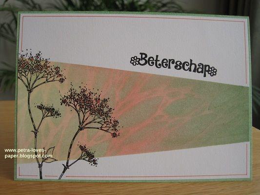 Oké... oké... dit zijn voorlopig écht de laatste kaarten die ik laat zien met de prachtige stempellap Wildflowers van HobbyART: De ...