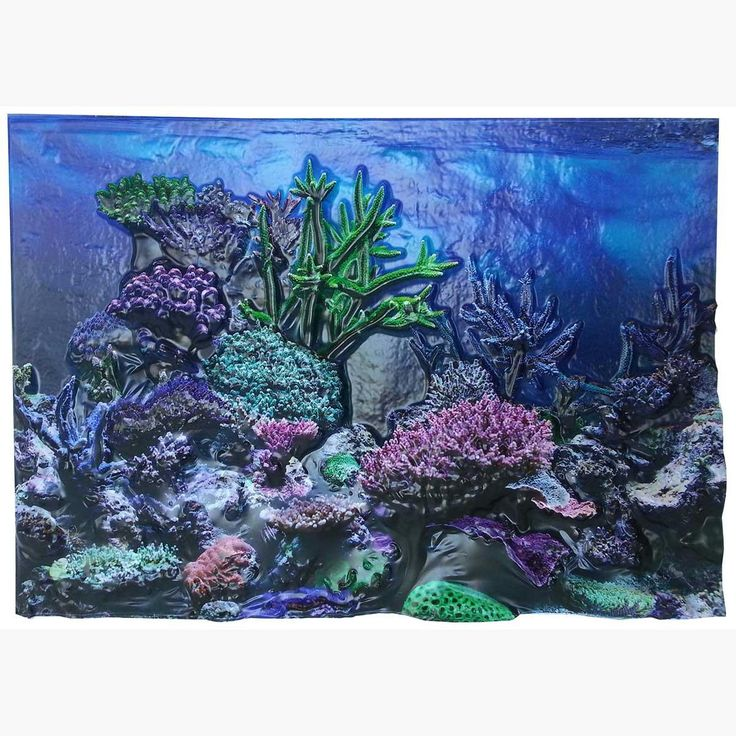 """Biobubble 3d Background Coral Reef 20 Gallons 24"""" X 12"""""""
