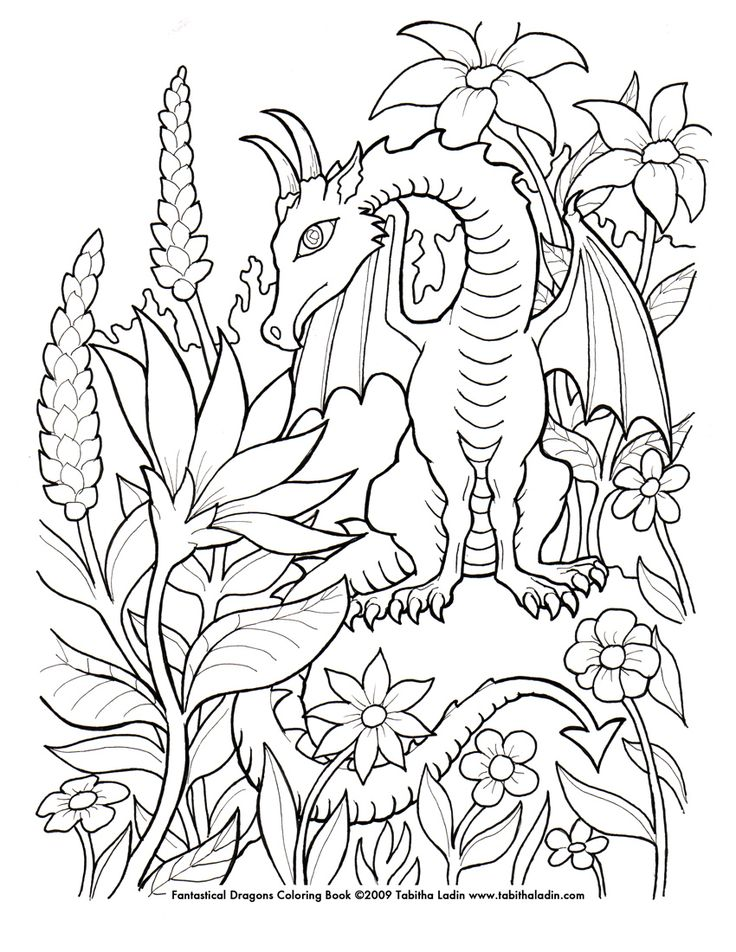image detail for fantasy dragon coloring pages submited images pic 2 fly