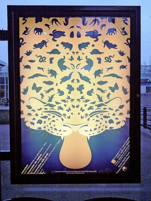 World Wildlife Fund animal conservation poster at Geneva airpor