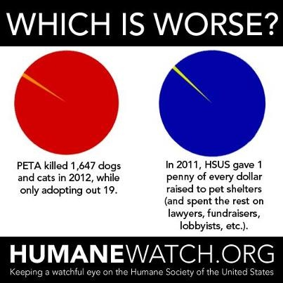 Image result for humane society scam