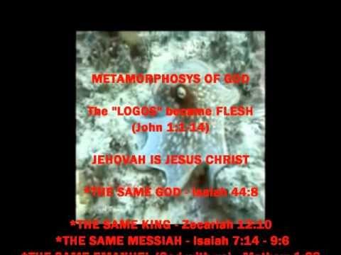 JESUS - Prototokos - BEFORE ALL (Junior Omni)   2014