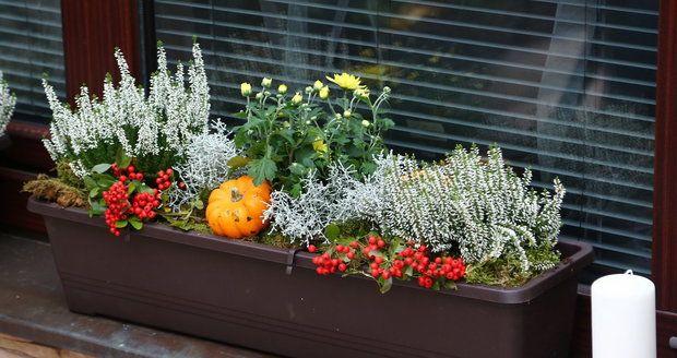 Osázené truhlíky můžete dekorovat různými přízdobami, které dokreslí panující roční období.