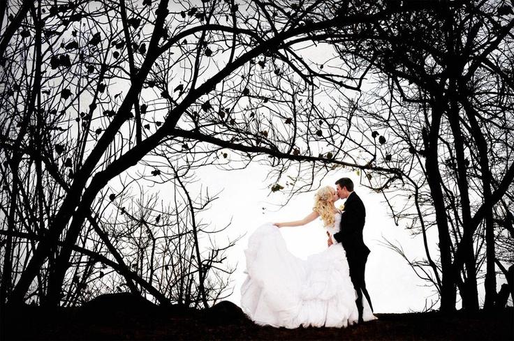 Wedding Photographers, Cairns, Palm Cove & Port Douglas | Port Douglas Wedding Photography - www.portdouglasphotography.net Shaun Guest - copyright