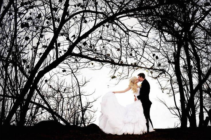Wedding Photographers, Cairns, Palm Cove & Port Douglas | Port Douglas…