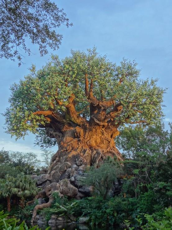 Inspirational Beading: Tree of Life Beading Tutorials: Awesome Trees, Animal Kingdom, Ancestor Trees, Trees Bonsai, Amazing Trees, Trees Of Life, Olives Trees, Art, Disney Trees