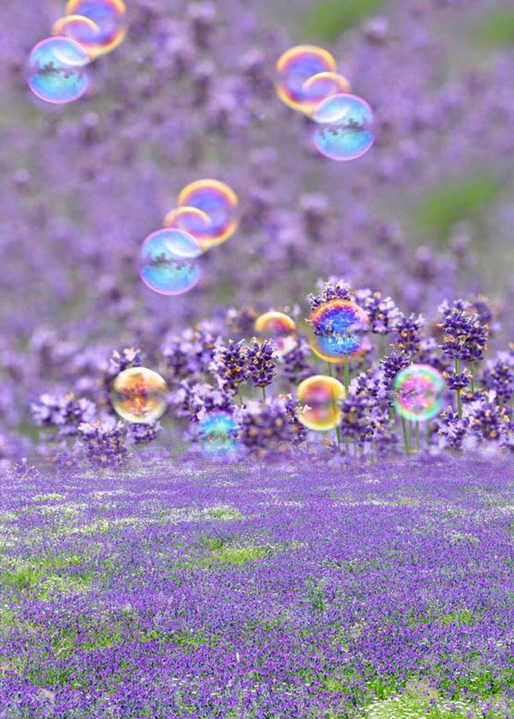 >> Click to Buy << Custom vinyl print cloth lavender flowers bubble photography backdrops for wedding photo studio portrait backgrounds props S-623 #Affiliate