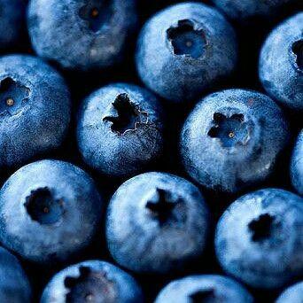 @blognaturopatia.com /2016/02/16/vaccinum-vitis/ blueberry healing power, natural remedies, naturopathy