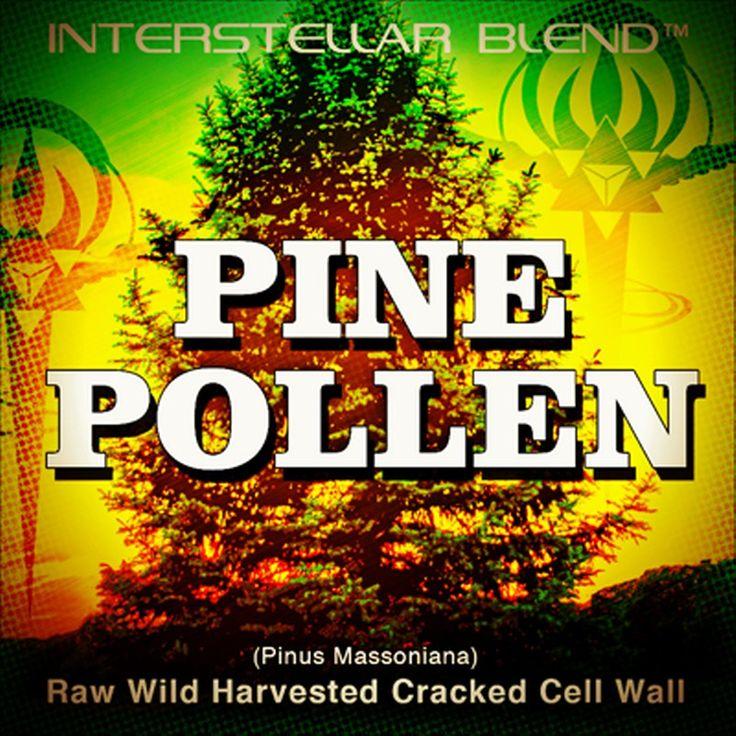 Pine Pollen Nutritional Content Alanine Arginine Aspartic Acid Cysteine Glutamic Acid Glycine Histidine Isoleucine Leucine Lysine Methionine Phenylalanine Proline Serine Threonine Tryptophan Tyrosine Valine • Alpha Linolenic Acid (ALA) • • Androsterone • Antioxidants • Dehydroepiandrosterone (DHEA)…