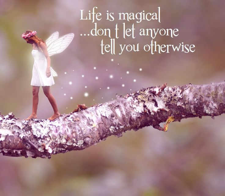 List of Synonyms and Antonyms of the Word: magic wishes