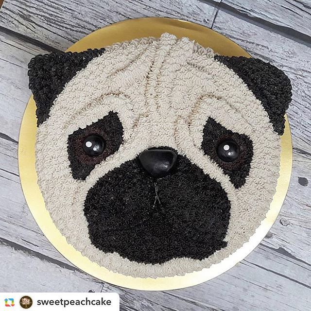 @sweetpeachcake:#pug #puppylove #birthday #birthdaycake #cake #cakes #eeeats #f52grams #onthetable #baked #buttercream #foodporn #foodgasm #bandungkuliner #cakebandung #baked #igers #instacake #instagood #instadaily #vsco #vscocam #vscofood #explorebandung #infobdg #bandungjuara #bandungfoodies #festejarcomamor #wilton