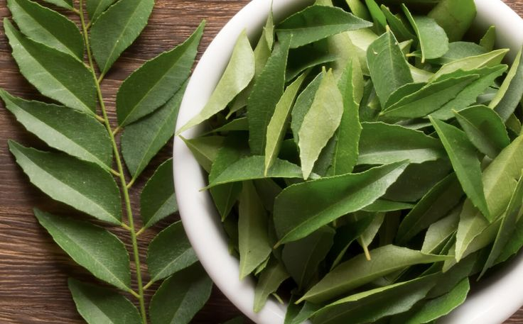 Curry Leaf Substitute - Bay leaf
