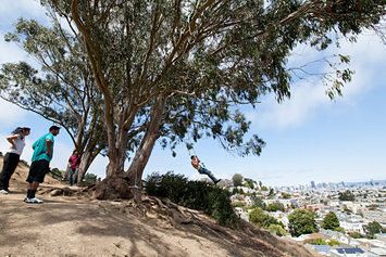 Glen Park's Billy Goat Park: A Place for Swingers | Curbed SF