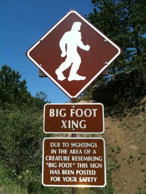 Colorado's Pikes Peakis said to be a place of bigfoot sightings .The first road to the summit of Pikes Peak was a carriage road opened in the fall of 1888 by the Cascade and Pikes Peak Toll Road Company. The…