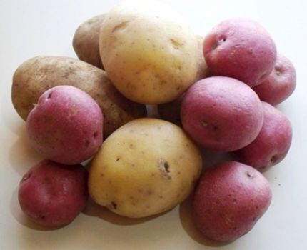 Video Homegrown Homemade Potatoes Includes How To Plant Hill Harvest Store Prep And