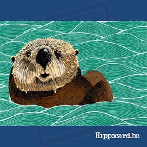 Blije Otter - Fien Cox